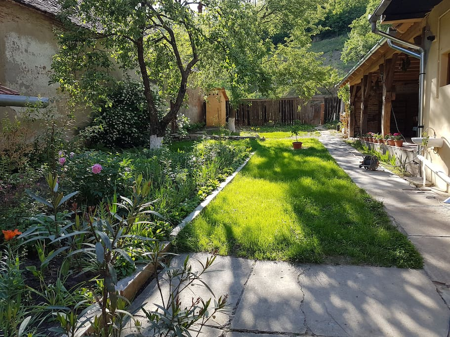 Beautifull courtyard with lot of flowers and green space and birds.