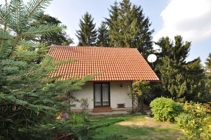 House for 5 persons in Česká Čermná R33028