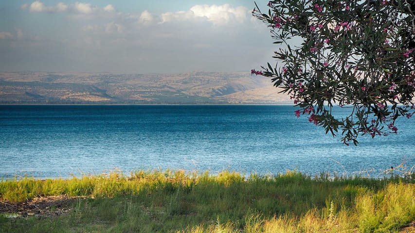 Amazing Place On the Sea of Galilee