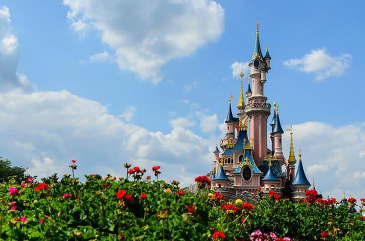 Flat between Disneyland and Paris