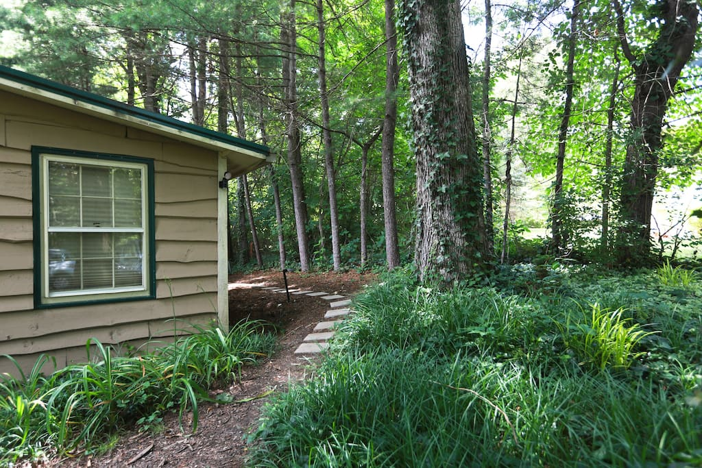 The path to our Peaceful Suite in the Trees located at the back of our house. It has a separate entrance.