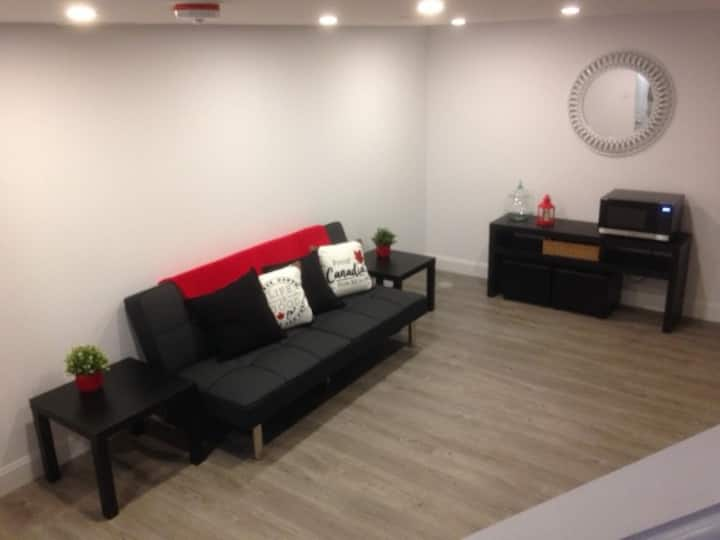 Private New One Bedroom Basement Apartment