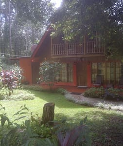 Mountain Chalet - Panamá - บ้าน