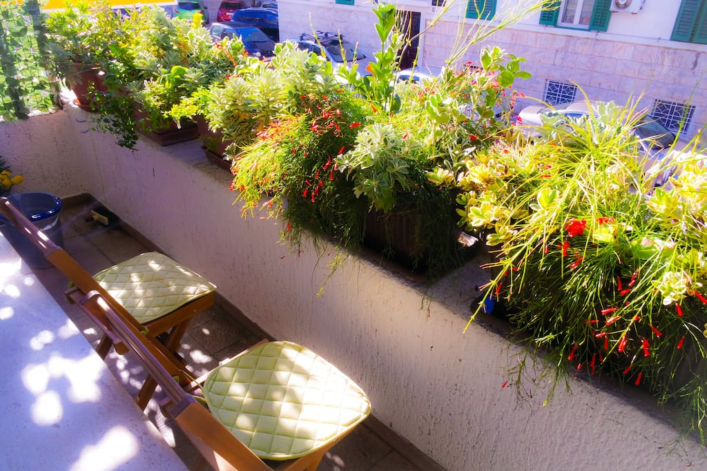 Our mini Mediterranean garden on the balcony full of colours and scents. Also convenient for smokers.