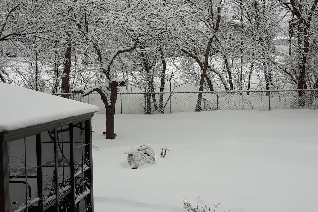 Notre cour en hiver. Le gazébo est en moustiquaire!
