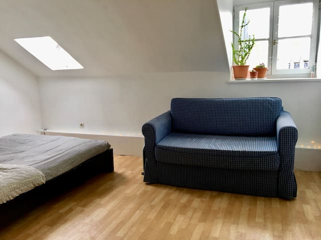 Sofa bed in a Studio shared in the center of Paris