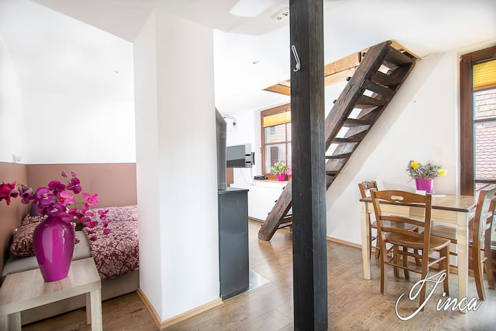 Main space of the apartment Tinca; 2 comfortable single beds, TV,AC,free WI-FI, fireplace, dining table, brand new kitchen with, stove, oven ,refrigerator, water heater.....the stairs leads to the mansarde room with double extra bed