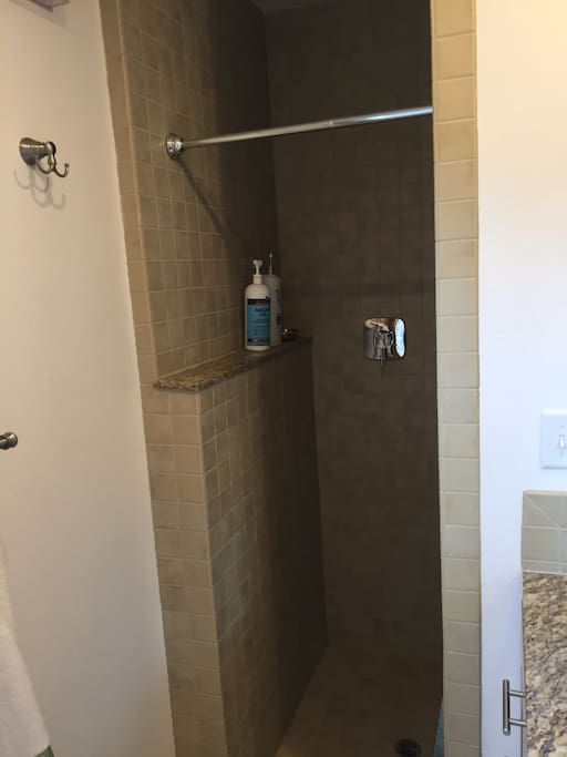 Walk in shower with rainfall shower head
