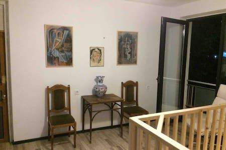 Villa Portina