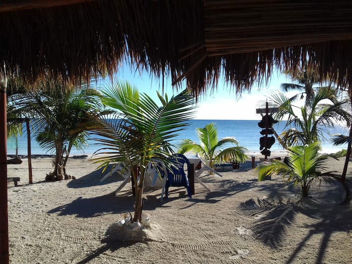 Private Beach Eco House (LUNAZUL)