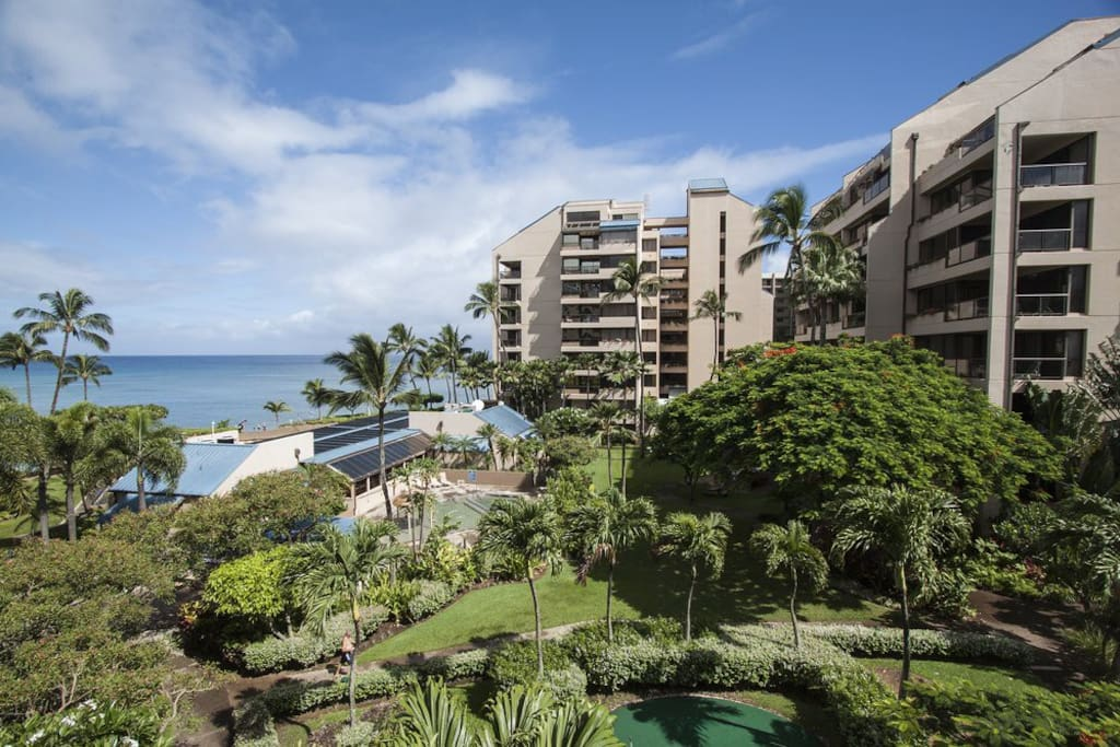 Apartments For Rent In Maui Hi