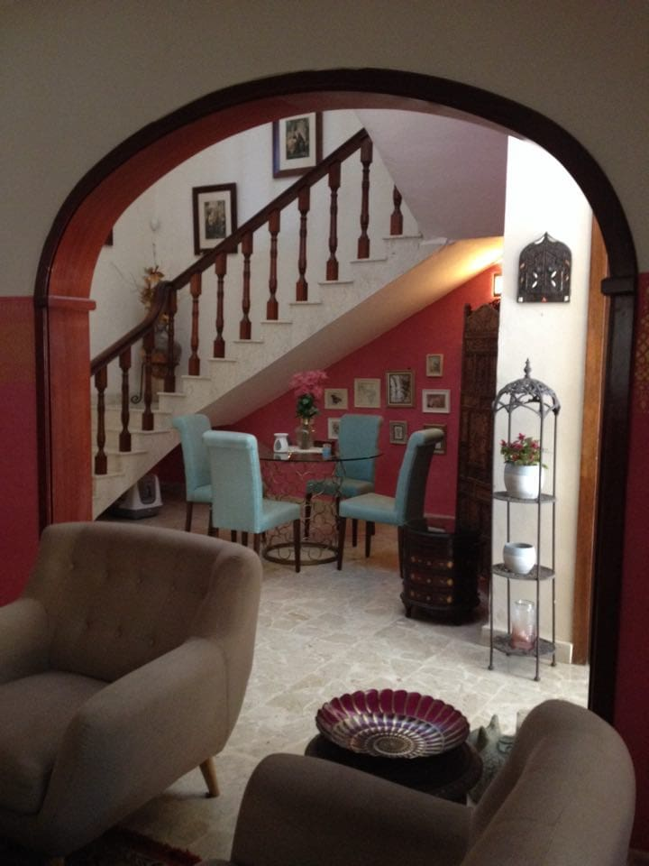 Bohemian House Twin/Double Room with friendly cats