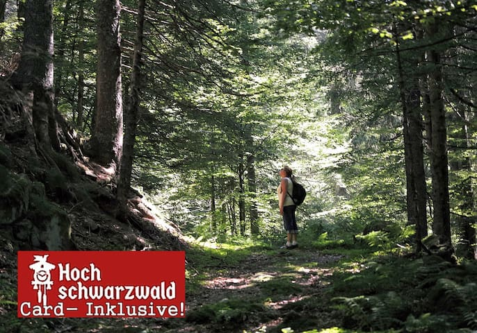 Black-Forest-Fewo C3, Pool +100 attractions free