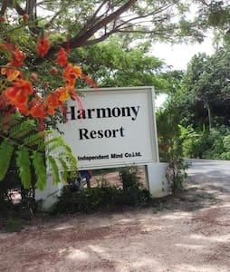 Harmony Resort and the Apollo swimming pool.