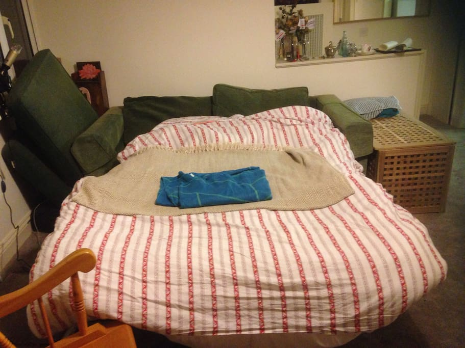 The bed, pulled out.