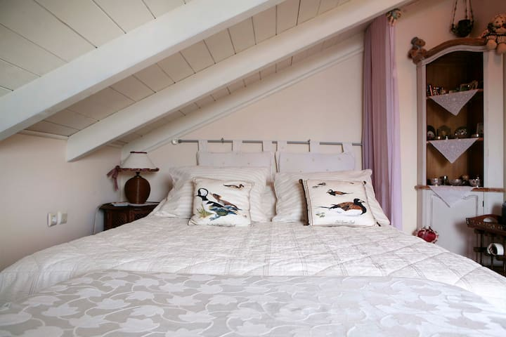 Zafi's Rooms