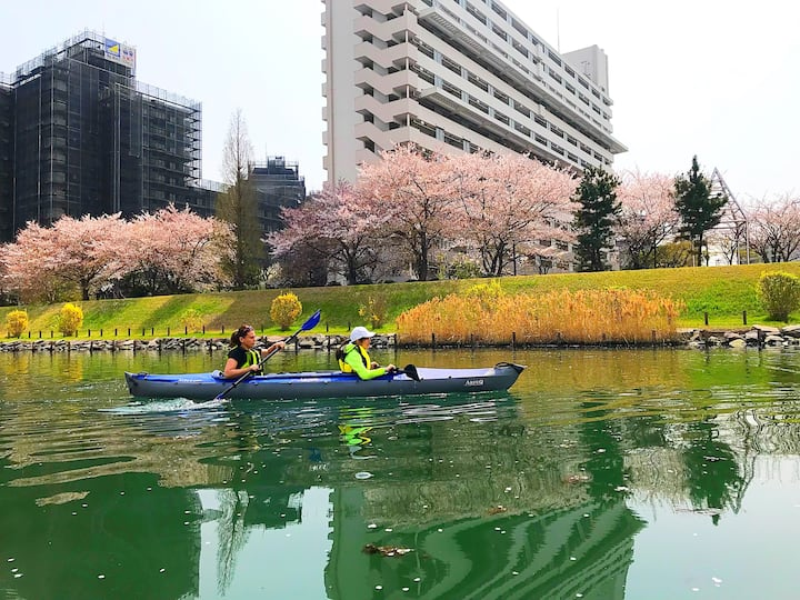 Paddling through  cherry blossoms
