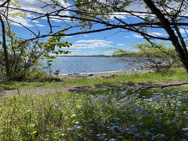 Nærme badestrand Ullern Oslo