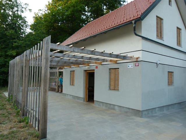 Vineyard cottage Smerke 2 - Mirna Peč - Casa