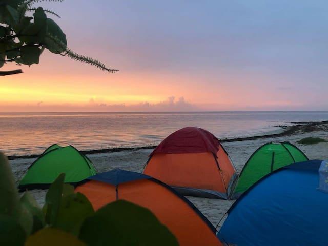 Campamento 2