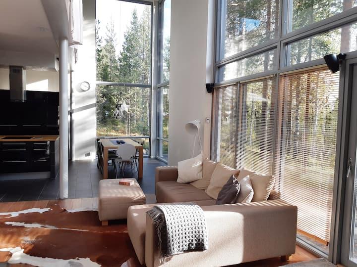 Modern Scandinavian Style house