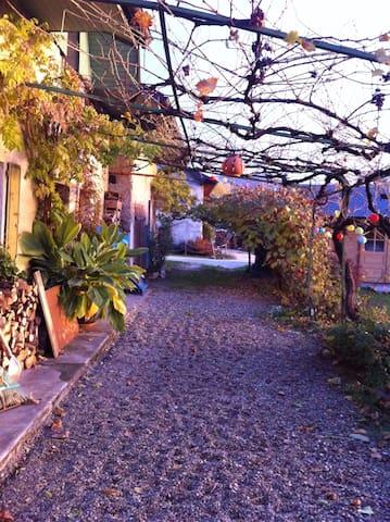 Ferme avec piscine et jardin,proche centre ville - Vimines - Dům