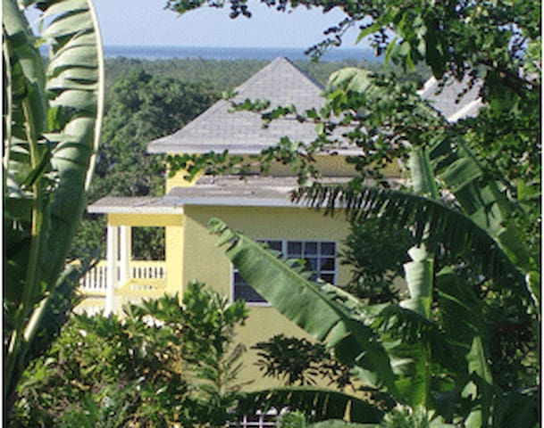 Pura Vida Jamaica One Bedroom Unit with Kitchen
