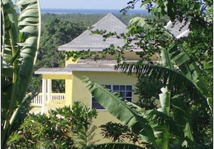 Pura Vida Jamaica One Bedroom Unit with Kitchen