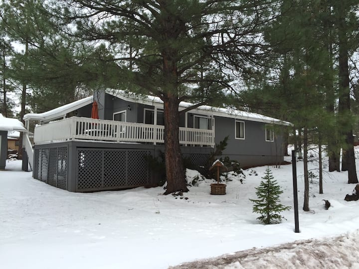 Remodeled 3 Bed Cabin in the Pines