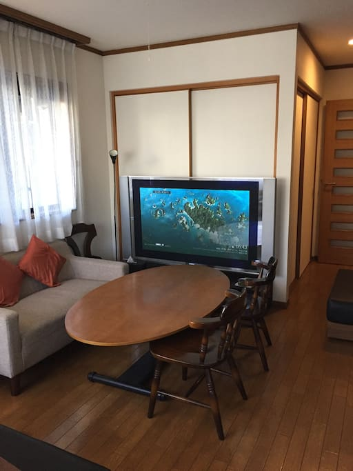 Living room with big television