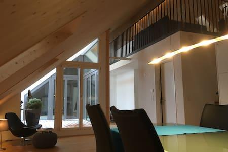 Offene Galerie in moderner Dachwohnung - Forch
