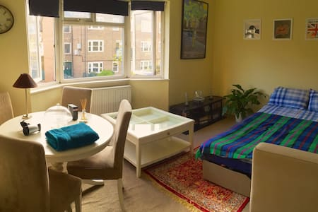 Comfortable pull-out couch !! - London - Apartment