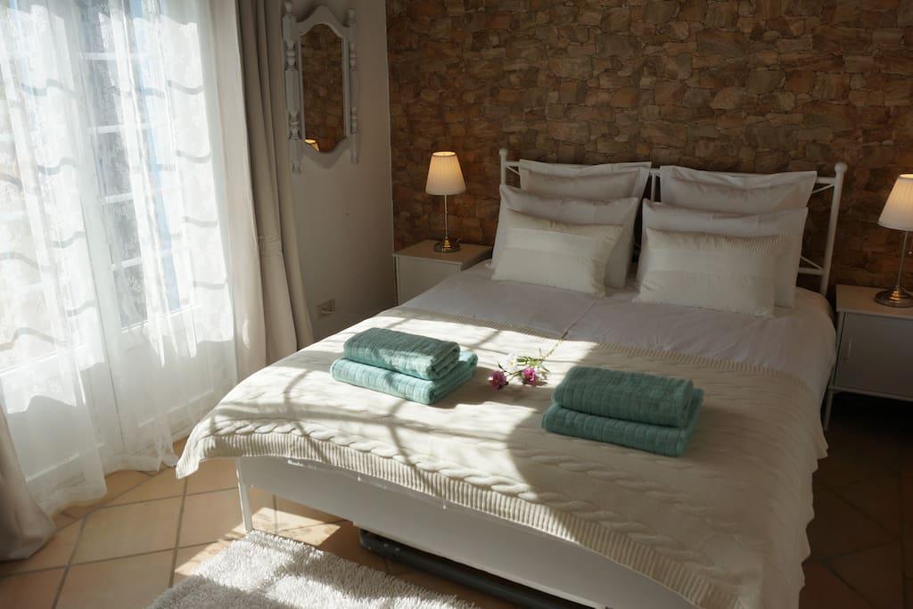 Bedroom + Privet Terrace Window