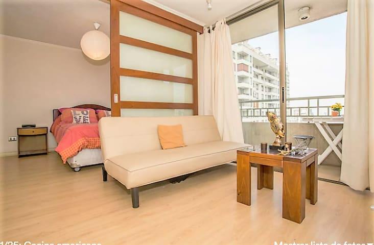 Entire place in Santiago -  3 Huéspedes  . 2 Camas - Santiago - Apartamento