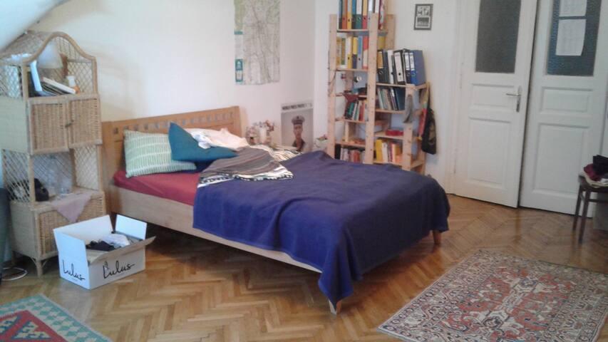 "Sunny Room next to Center & ""Augarten"" Park - Graz - Appartement"
