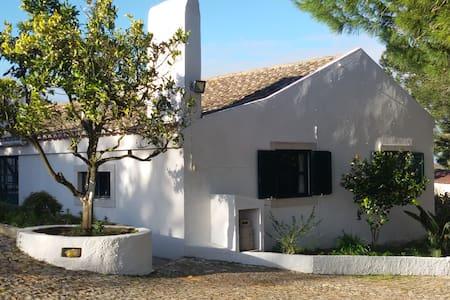 Guesthouse Azeitão, Arrabida.Near beaches - Azeitão - 别墅