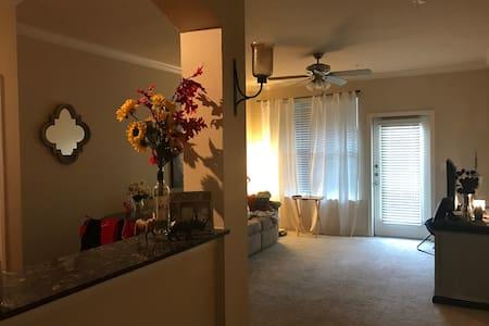 Jones AT&T Apartment! - Lubbock