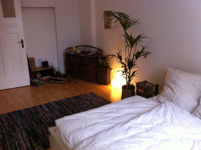 Bright Room 20qm