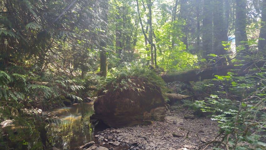 Scott Creek Farm - Portland - Bungalow