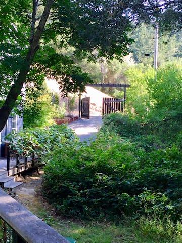 Serene Sunny Garden Getaway in West Marin