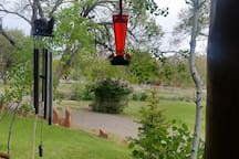 The hummingbirds love the front porch.