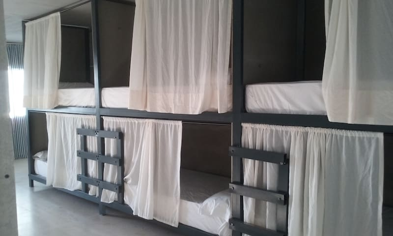Bunk Mixed Dormitory Room