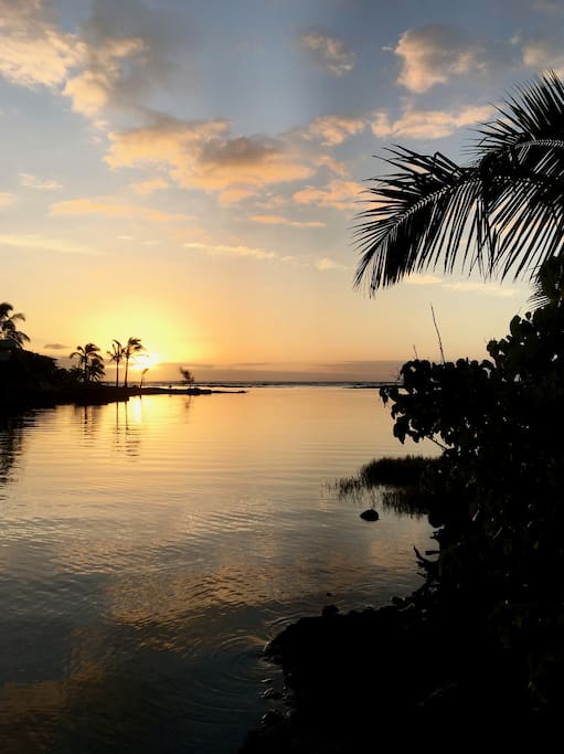 Walk 3 min. to the tide Pools for your first sunrise or a quiet contemplation moment, then take a dip in the warm, effervescent waters.