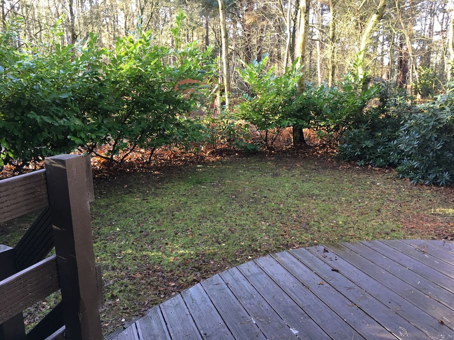 South west facing decking