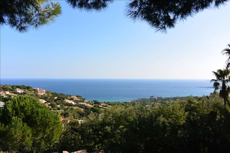Vue du domaine sur le Golfe de Saint-Tropez