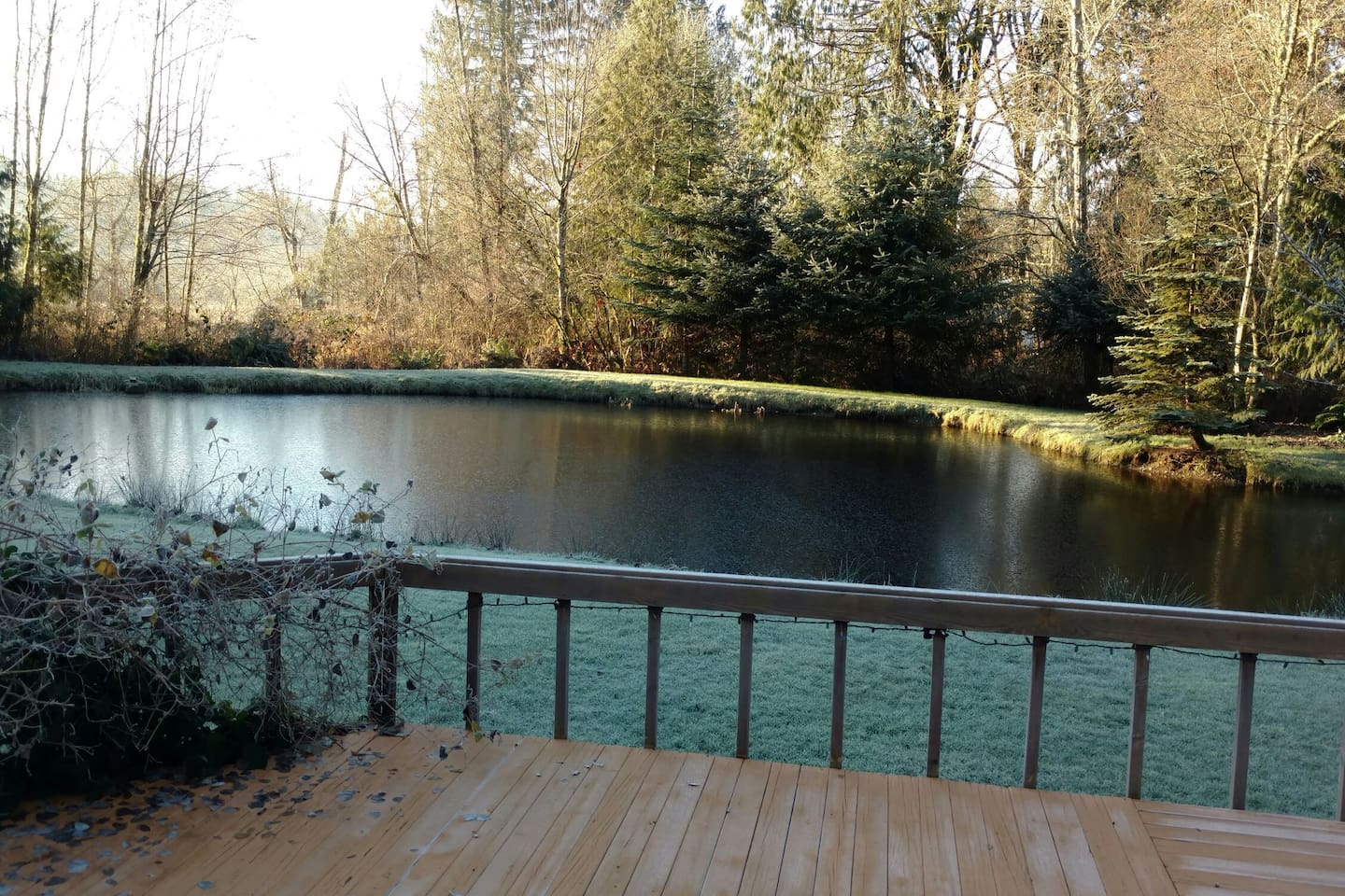 The pond in Winter as viewed from our back deck.
