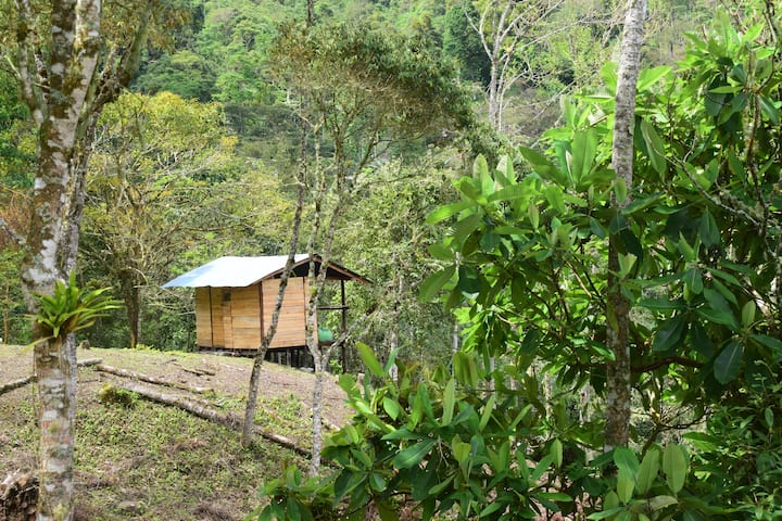Monte La MaMa Glamping Lodge - Nido