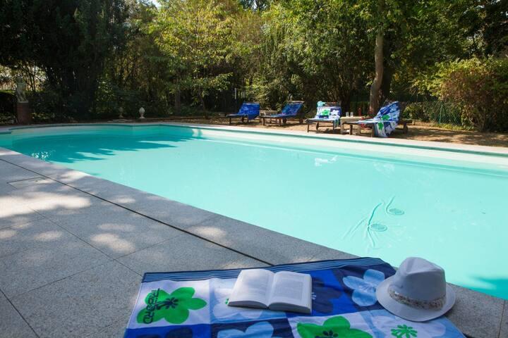 Appartement 6 pax au vert avec piscine