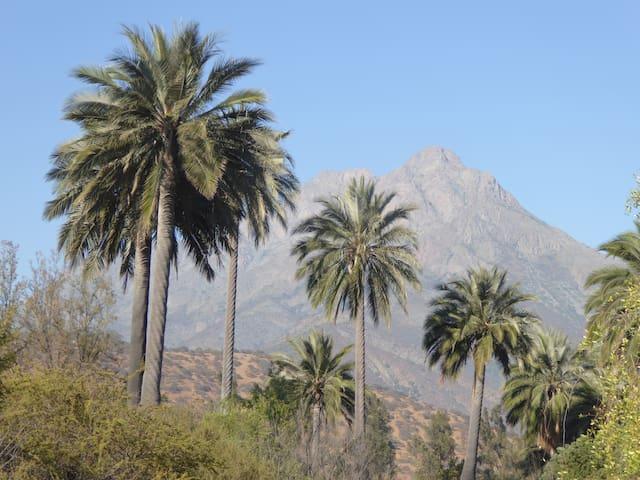 Cabaña Parque Nacional La Campana