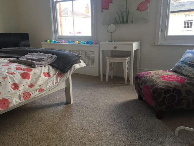 Spacious room in Victorian house - Ipswich - Bed & Breakfast